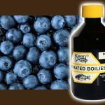 blueberry-dynamite-boiliesoak