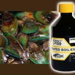 green-lipped-mussel-boiliesoak