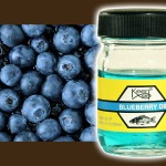 blueberry-dip